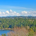 The property rests directly across from the peninsula of Seward Park. Views of towering woodlands against the backdrop of the Cascade mountains are a beautiful way to begin and end every day.