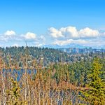 The skyline of the city of Bellevue under the foothills of the Cascades serves to remind that this slice of heaven is just minutes away from everything a city-dweller needs.